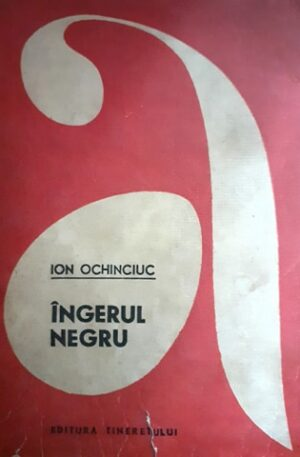 Ion Ochinciuc Ingerul negru