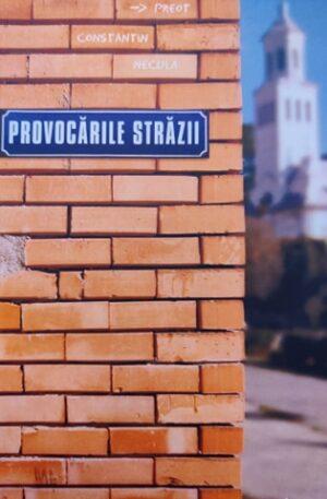 Constantin Necula Provocarile strazii. Mic catehism vorbit