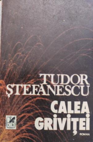 Tudor Stefanescu Calea Grivitei